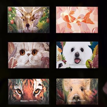 完美日记xDiscovery探索频道联名眼影探险家十二色动物眼影